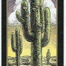 Doral 2006 Card Americas Backyard #3 Saguaro Cactus