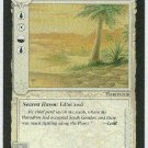 Middle Earth Southron Oasis Wizards Limited Rare Game Card