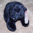 Cinders The Black Bear TY Beanie Baby Born April 30, 2000