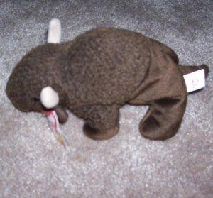 Roam The Buffalo TY Beanie Baby Born September 27, 1998