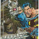 Superman Doomsday #S2 Foil Card A Memorial Tribute