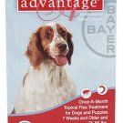ADVANTAGE CANINE RED 21-55#