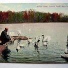 Swan Lake, Central Park, New York City
