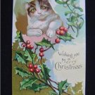 Early Cat ~ Mistletoe Wishing You a Merry Christmas NM