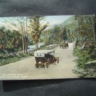 The Mohawk Trail Near Charlemont Mass Post Card