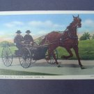 Amish Boys Drive Horse Buggy Carrage Linen Post Card NM