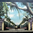 Entrance to the Clubhouse Hialeah Race Course Florida Color Linen Post Card