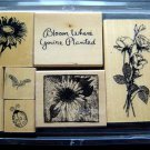 Anita's Flower Bloom Where You're Planted 8 Rubber Stamps