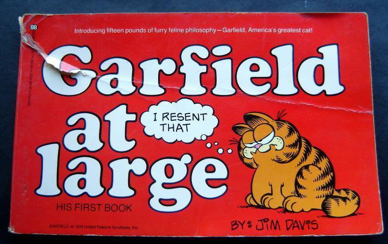 Garfield the Cat Garfield at Large Book by Jim Davis 1st  Book 1980 Fair