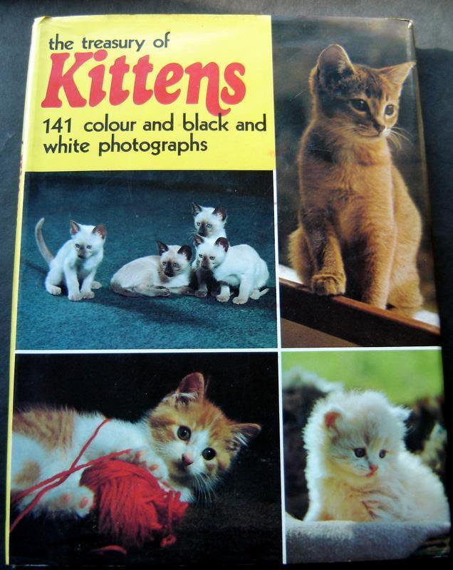 The Treasury of Kittens Book Hardcover w/ DJ 1973 141 Color / B & W Photographs