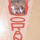 1960's Florida Orange Bowl pennant with photograph insert