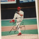 St. Louis Cardinals baseball Andy Benes 8x10 photo - signed (autographed)