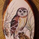 Beautiful Owl illustration on wood wall art - Snowy Owl?, Perfect condition