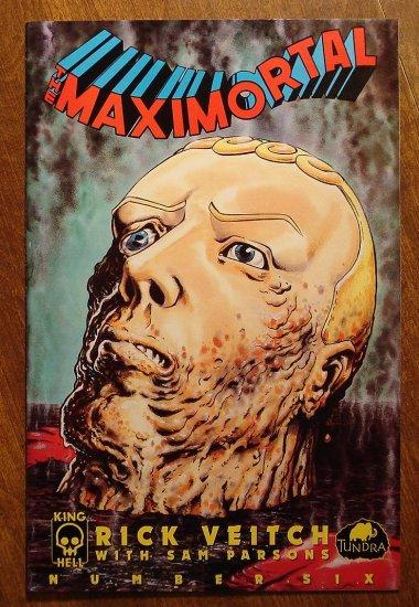 MaxiMortal #6 comic book - King Hell Comics - Rick Veitch