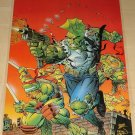 Image comics Savage Dragon & Teenage Mutant Ninja Turtles (TMNT) poster, 23x35, rolled