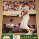 Mark McGwire poster, never displayed, rolled, 16x20, Oakland A's, St. Louis Cardinals