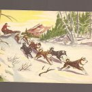 1950 Sgt. Preston Challenge of the Yukon non-sports card #9 NM