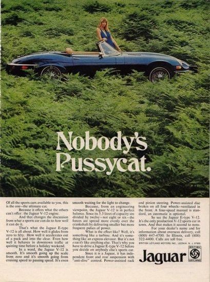 Vintage 1974 Nobody's Pussycat Blue Jaguar AD
