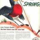 Vintage 1952 Texaco Robin Spring Gasoline Gas AD