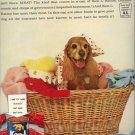 Vintage 1961 Cocker Spaniel Ken L Ration Dog Food AD