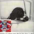 Vintage 1960 English Springer Spaniel Ken L Ration Dog Food AD