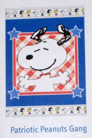 Patriotic Peanuts Gang Patchwork Decorative Garden Flag 13