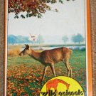 Wild Animals Deer Days 150 Piece Picture Jigsaw Puzzle Warren Paper Products 1165 SEALED