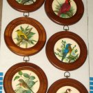 PH Gonner Bird Wall Plaques Round Pictures Wood Frame Set of 6 Artwork Cardinal Goldfinch Bluebird