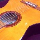Acn G1 Classic Guitar