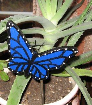 Blue Butterfly Wood Plant Poke