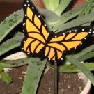 Yellow Butterfly Plant Poke