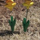 Daffodils set of 2