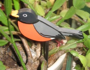 Robin wood  bird  Plant Poke