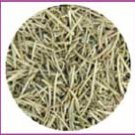 Organic Rosemary Herb
