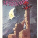 The Amazing Spiderman – 1990 - Spirits Of the Earth