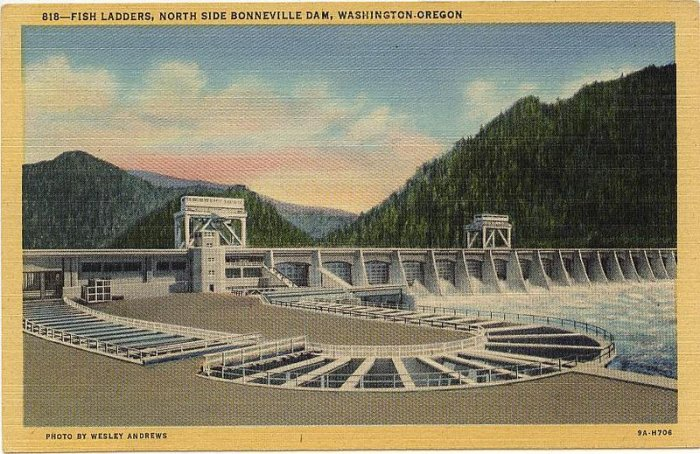 Bonneville Dam Washington Oregon Andrews Real Photo PC Linen