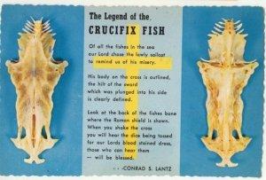 1979 Chrome Post Card The Legend of the Crucifix Fish Conrad S. Lantz  Postcard