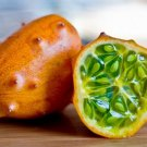 Tropical Kiwano Horned Melon Cucumis metuliferus - 20 Seeds