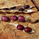 New! Heirloom Colombian Red Cargamanto Bean Heat Loving Rare Phaseolus Vulgaris - 30 Seeds