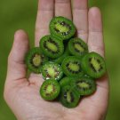 Heirloom Cocktail Miniature Kiwi Kiwiberry Berry Hardy Actinidia arguta - 30 Seeds