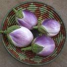 Italian Heirloom Eggplant 'Rosa Bianca' Solanum melongena - 50 Seeds