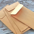 Plain Seed Saving Packets Manila Kraft Envelopes for Seeds 3 x 4.5 Inches - 20 Envelopes
