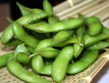 Organic Edamame Midori Giant Glycine max - 30 Seeds