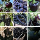 Almost Black Heirloom Heritage Vegetable Seed Collection 9 Varieties