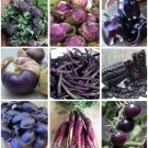 Power of Purple Organic Heirloom Vegetables Collection 9 Varieties