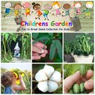 Children Garden - Science, Flower and Vegetable - Seed Gift in a Box