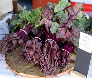 Unique Organic OP Miniature Beet Beta vulgaris - 50 Seeds