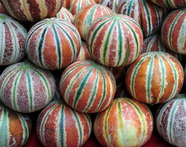 Rare Kharbooza Kajari Melon India Cucumis melo - 20 Seeds