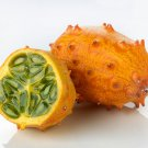 African Kiwano Jelly Melon Cucumis metuliferus - 20 Seeds
