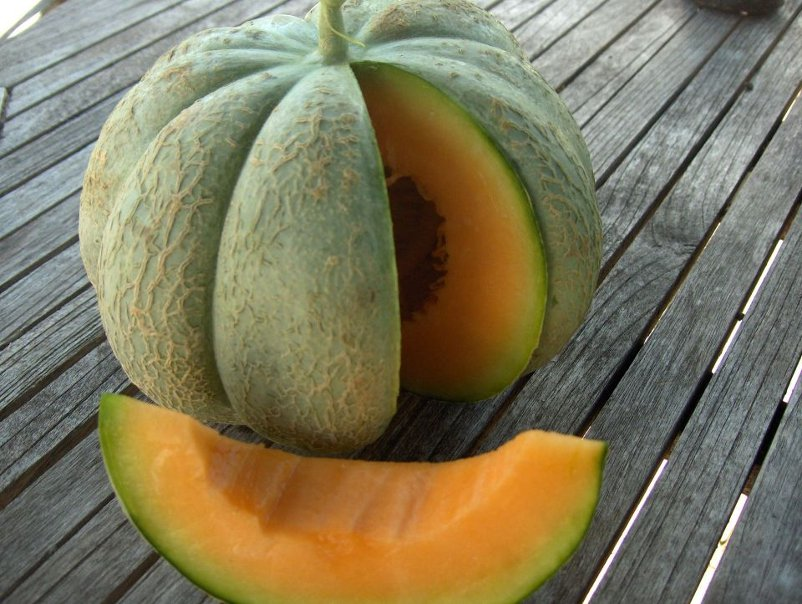 Rare french melon